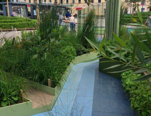 Фестиваль «Цветочный джем»: Неглинка-сад на Сухаревской
