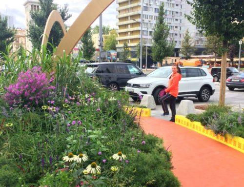 Фестиваль ландшафтного искусства «Цветочный джем»: сад «Шелковый путь» на Новом Арбате